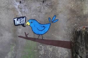 twitter_event parrot