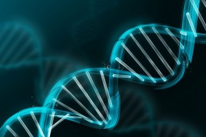 DNA-integrative