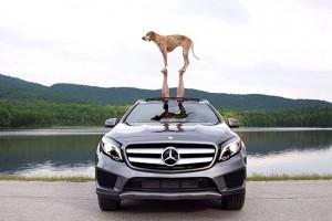 Mercedes-Benz, yeni nesle araba satmak için Instagram kullanıyor