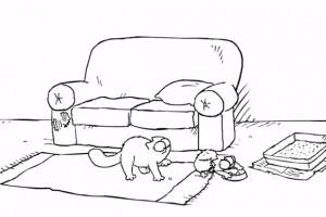 simon'un kedisi