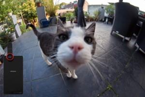 En iyi selfie fotoğrafı için 10 ipucu
