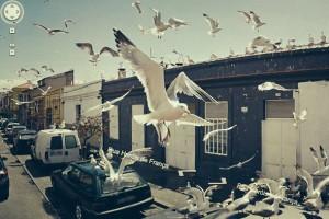Google Street View'da olduğuna inanamayacağınız 24 fotoğraf