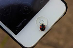 Türk kullanıcılarının ilk tercihi akıllı telefonlar