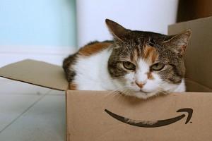 Amazon, artık Walmart'tan daha büyük