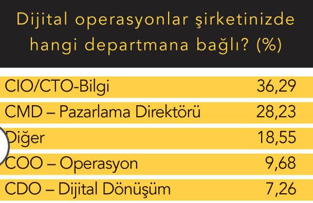 Şirketinizde CDO hangi yöneticiye bağlı?