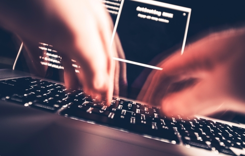 Bir şirket miyav dedi minik hacker kükredi