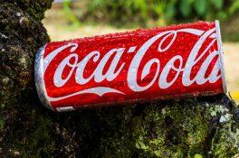 coca cola fortune 500