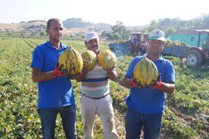 Vodafone akıllı köy ilk mahsülünü verdi