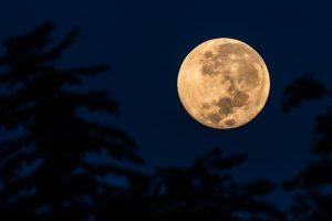 Twitter'da Süper Ay markaları Süper Ay coşkusu sardı