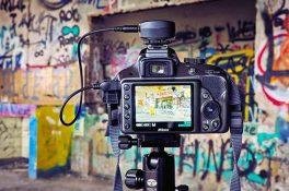 Harvard Üniversitesi, ücretsiz online fotoğrafçılık eğitimlerine başlıyor