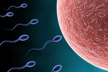 "Dondurulmuş ""uzay spermi"" üreme testini geçti"