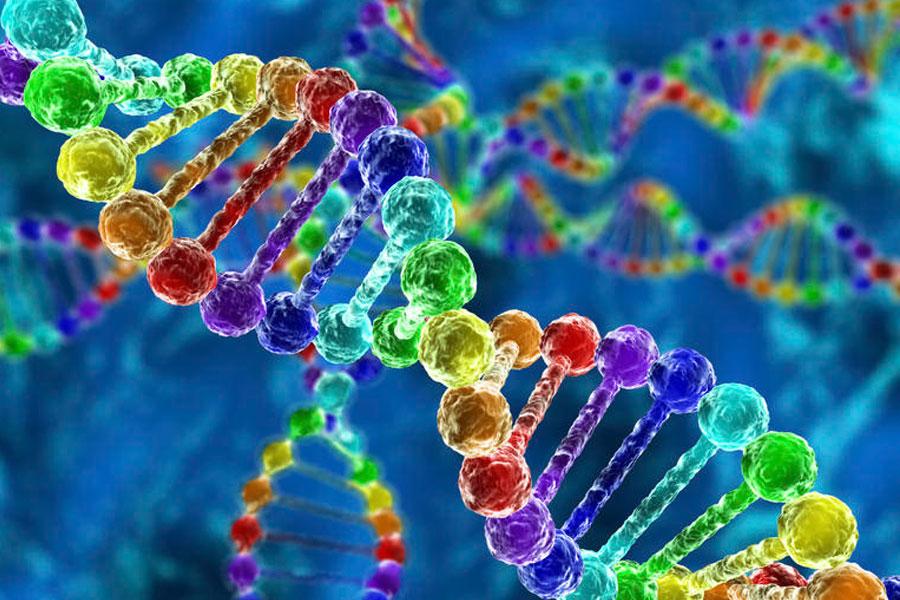 İnsan DNA'sıyla bilgisayar hacklediler