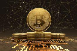 Bitcoin, 21. yüzyılın altını olacak