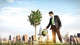 girişimcilik ekosistemi nasıl gelişir