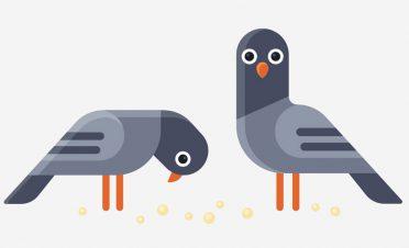 Mindfulness ile Instagram'a güvercin gibi davranmamayı nasıl başarırız?