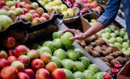 HKS Mobil uygulamasıyla sebze ve meyve ticaretini takip etmek mümkün