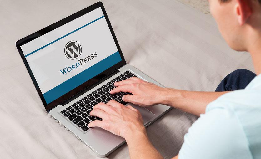 WordPress dünyası WPFest'te buluşuyor