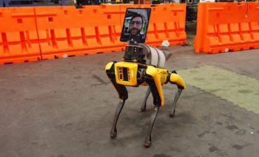 Boston Dynamics'in robot köpeği SpotMini, doktorlara yardım etmeye başladı