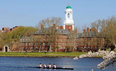 Harvard Üniversite'sinde gelecek yıl tüm dersler internet üzerinden verilecek