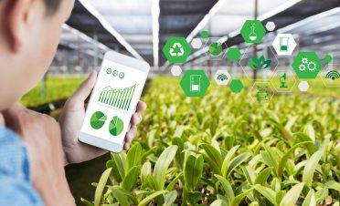Gıdanın geleceği akıllı tarımda